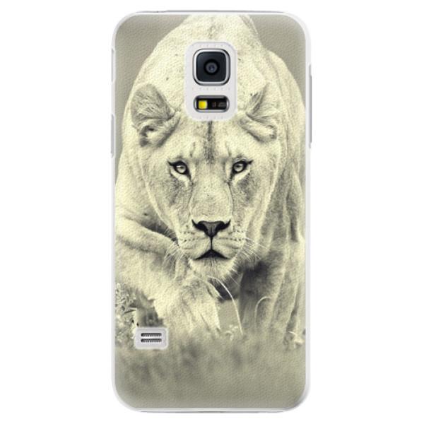 Plastové pouzdro iSaprio - Lioness 01 - Samsung Galaxy S5 Mini