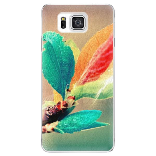 Plastové pouzdro iSaprio - Autumn 02 - Samsung Galaxy Alpha