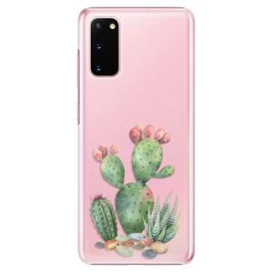 Plastové pouzdro iSaprio - Cacti 01 na mobil Samsung Galaxy S20