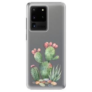Plastové pouzdro iSaprio - Cacti 01 na mobil Samsung Galaxy S20 Ultra