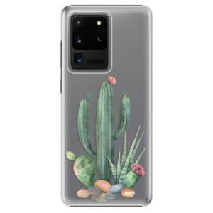 Plastové pouzdro iSaprio - Cacti 02 na mobil Samsung Galaxy S20 Ultra