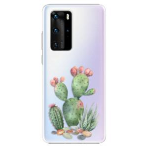 Plastové pouzdro iSaprio - Cacti 01 - na mobil Huawei P40 Pro