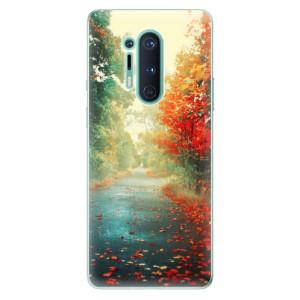 Silikonové pouzdro iSaprio - Autumn 03 na mobil OnePlus 8 Pro