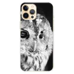 Plastové pouzdro iSaprio - BW Owl na mobil Apple iPhone 12 Pro