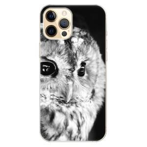 Odolné silikonové pouzdro iSaprio - BW Owl na mobil Apple iPhone 12 Pro Max